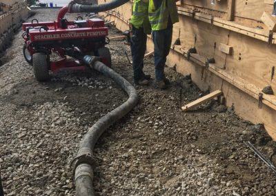 Concrete Line Dragon